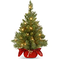 Amazon Price History for:National Tree Company Pre-lit Artificial Mini Christmas Tree | Includes Small LED Lights, and Cloth Bag Base | Majestic…