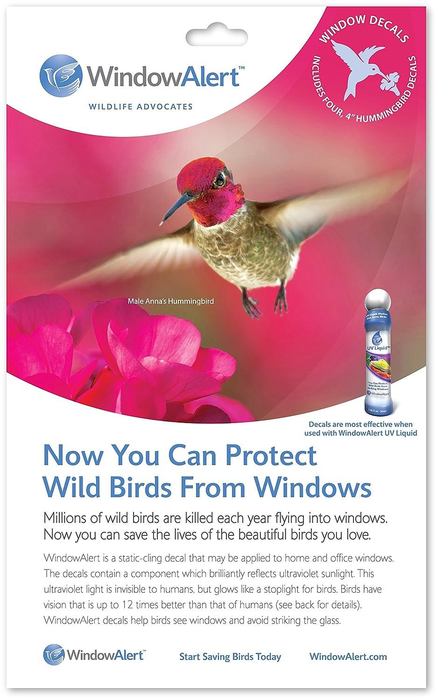 Amazoncom Window Alert Hummingbird Decals Bird Decals For - Window decals for bird safety