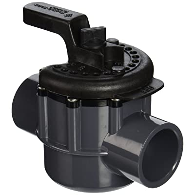 Pentair 263038 1-1/2-Inch 2-Way PVC Diverter Valve : Swimming Pool Filter Valves : Garden & Outdoor