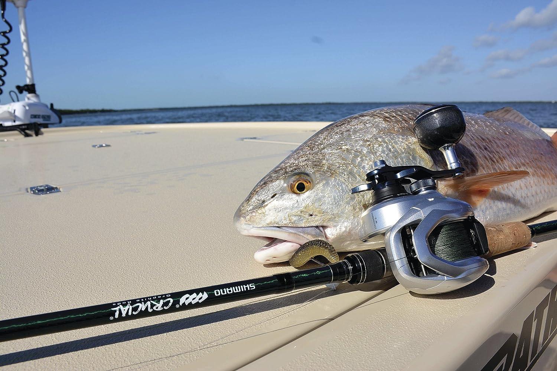 Left Hand Baitcasting Fishing Reel with Power Handle TRX301AHG Shimano TRANX 301A HG