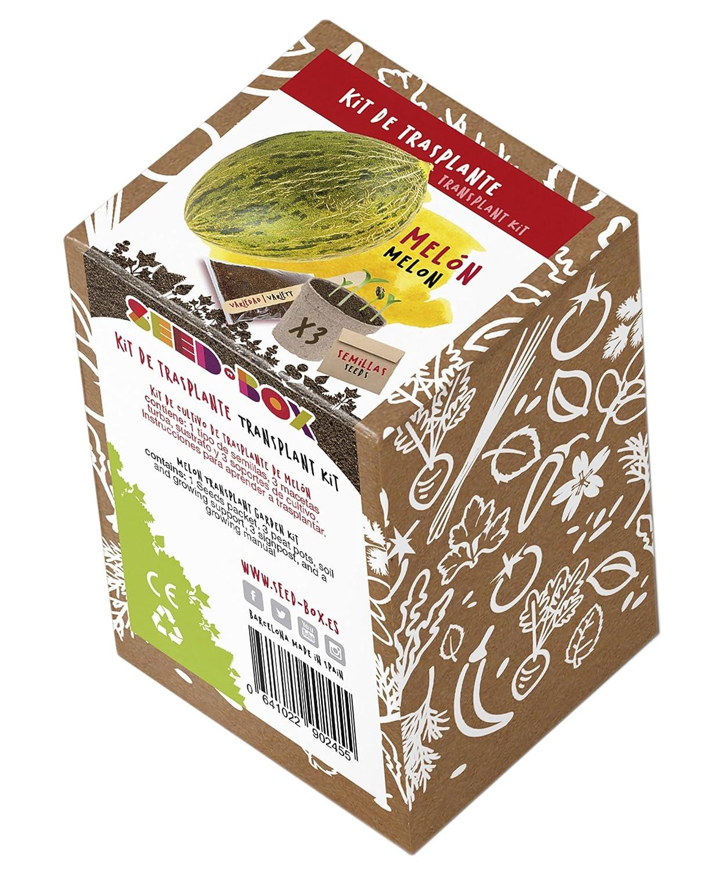SeedBox KTVHTA Huerto Urbano kit trasplante de tomate ace 0.7x0 ...