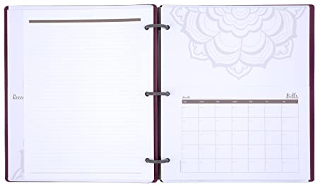 Amazon.com : Mead Organizher Expense Tracker, 8.5 x 11 Inches ...
