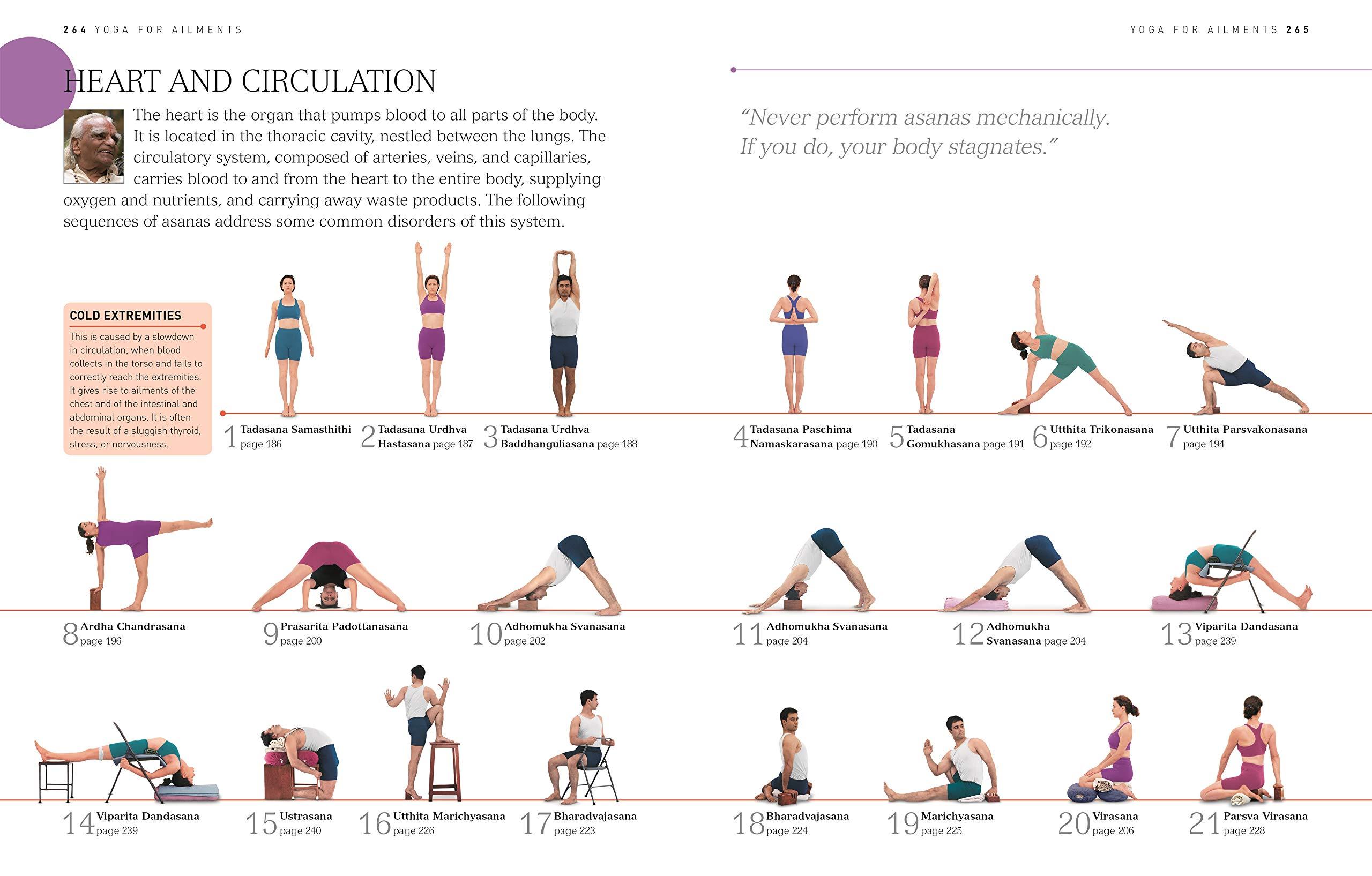 B.K.S. Iyengar Yoga: The Path to Holistic Health: Amazon.es ...