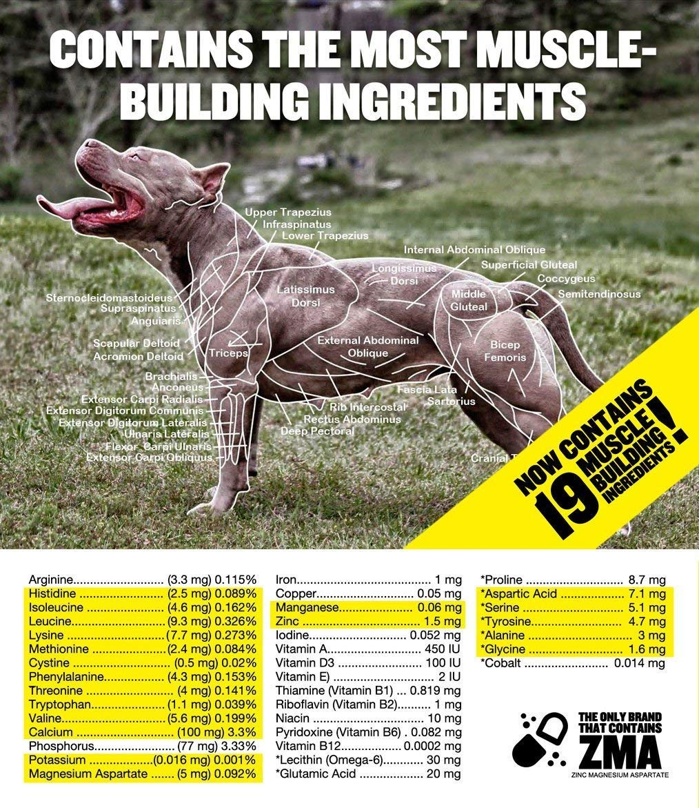 Bully Max The Ultimate Canine Supplement  Vet-Approved Muscle Builder for  Dogs  for All Breeds & Ages (Puppies & Adults)  Adds Muscle & Size  Boosts