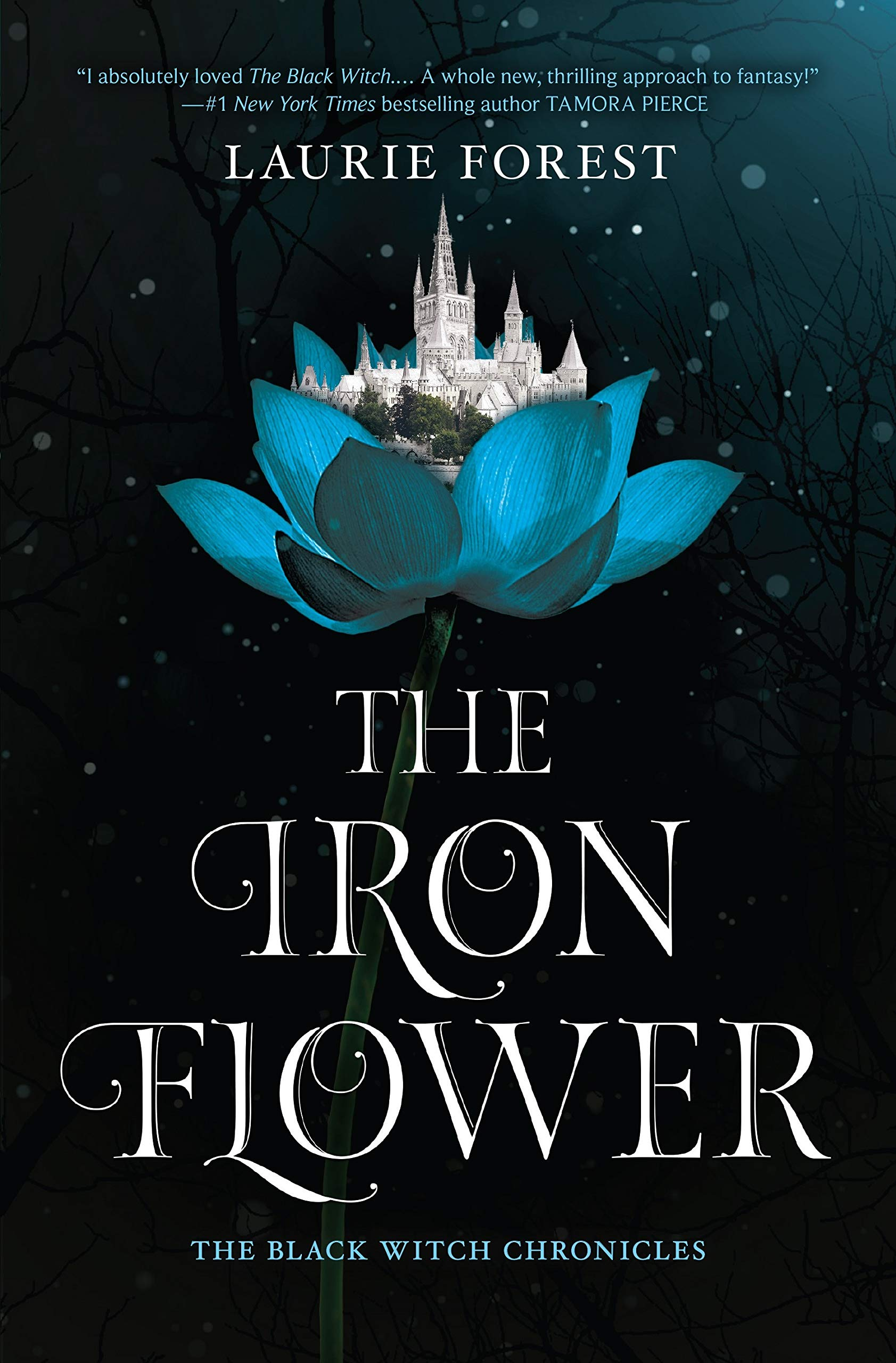 Amazon.com: The Iron Flower (The Black Witch Chronicles ...