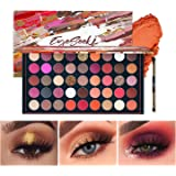 EYESEEK Matte Eyeshadow Palette Makeup Brushes Set 45 Shades Shimmer Smoky Glitter Eyeshadow Pallet High Pigmented…
