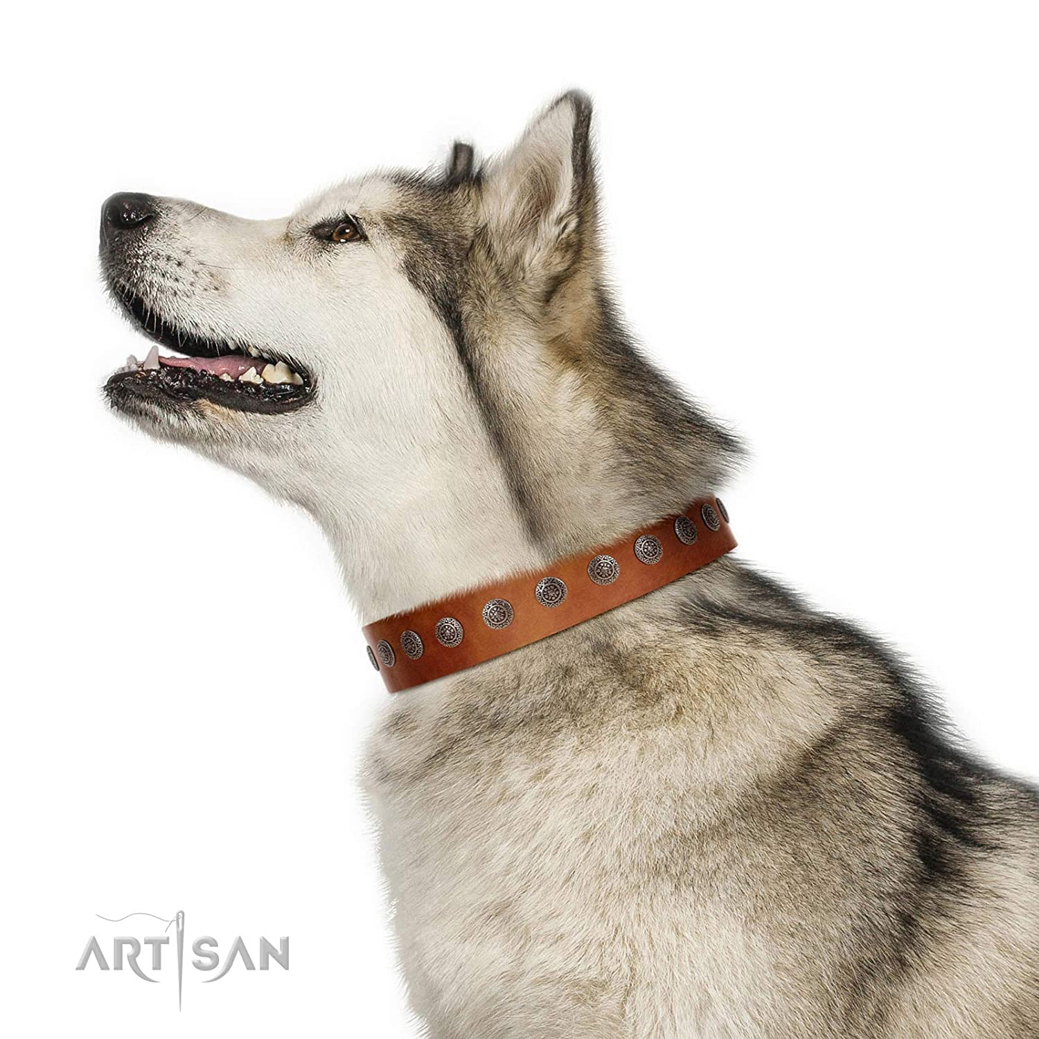 Fits for 24 inch (60cm) dog's neck size FDT Artisan 24 inch Lucky Star Handmade Designer Tan Leather Dog Collar with Round Plates 1 1 2 inch (40 cm) Wide Gift Box Included