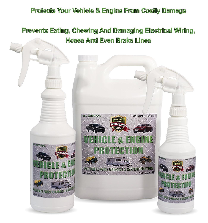 Amazon.com : Natural Armor Engine & Vehicle Rodent Defense Repellent ...