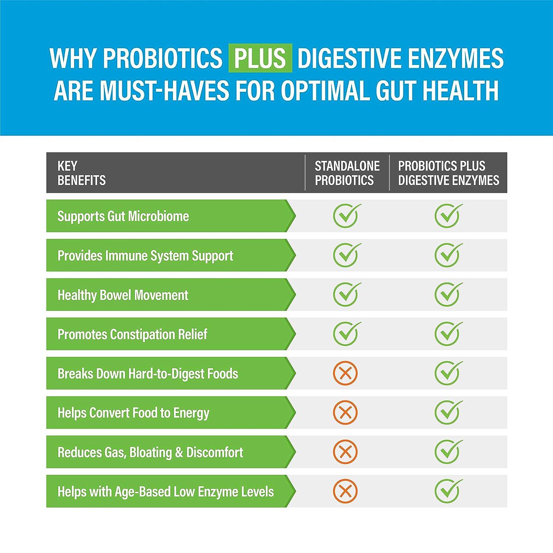 Amazon.com: Enzimas digestivas más prebióticos y probióticos ...