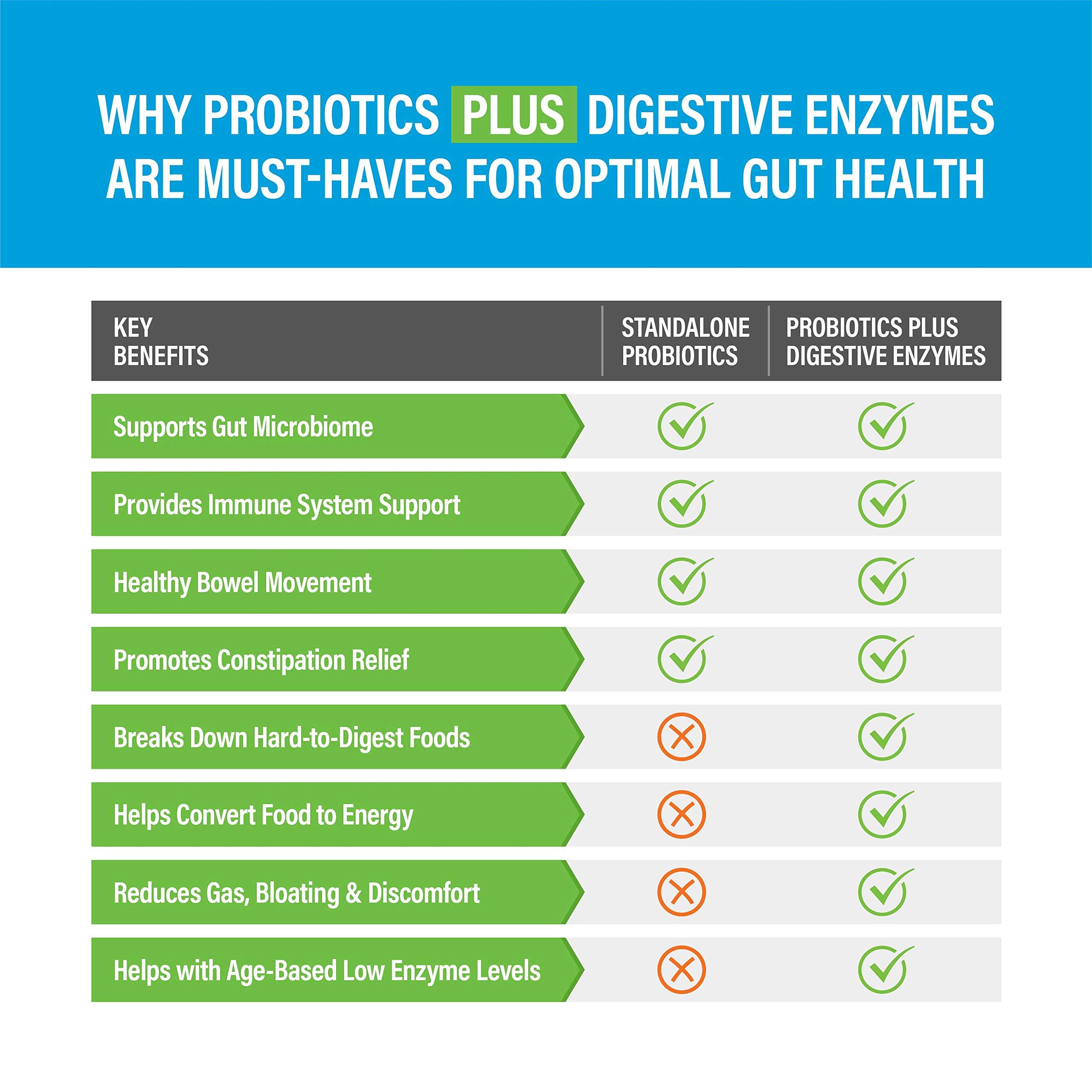 Digestive Enzymes Plus Prebiotics & Probiotics Supplement