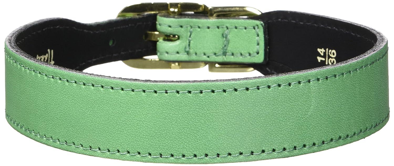 Hartman & pink Plain gold Plated Dog Collar, 14 to 16-Inch, Emerald Green