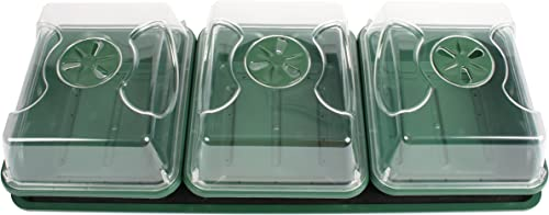 EarlyGrow 70782 Propagator with Tray and Mat, 9 x 21 x 6 , Black Green