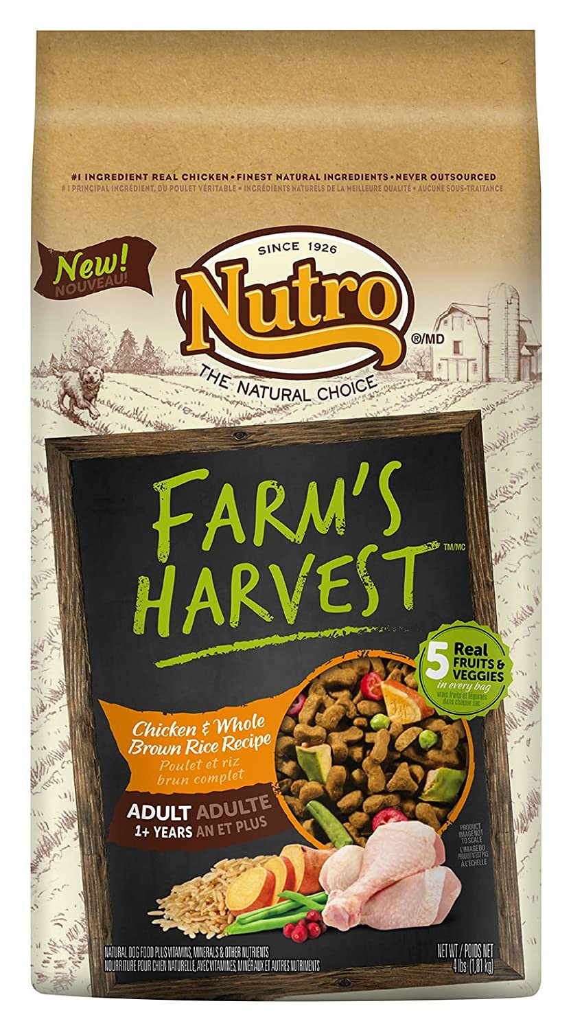 Amazon nutro farms harvest adult chicken and whole brown rice amazon nutro farms harvest adult chicken and whole brown rice 4 lbs pet supplies forumfinder Image collections