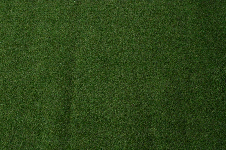 400x200 cm Rasenteppich Kunstrasen Standard gr/ün Velours Weich Meterware mit Drainage-Noppen wasserdurchl/ässig verschiedene Gr/ö/ßen
