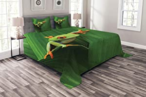 Ambesonne Animal Bedspread, Red Eyed Frog Between Exotic Macro Big Leaves Wild Nature Night Animal Vivid Colors, Decorative Quilted 3 Piece Coverlet Set with 2 Pillow Shams, Queen Size, Green