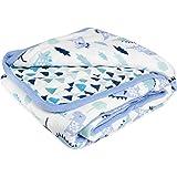 aden by aden + anais Dream Blanket, Dinos