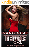 Gang Heat: The Stewardess (Unprotected Force Book 2)