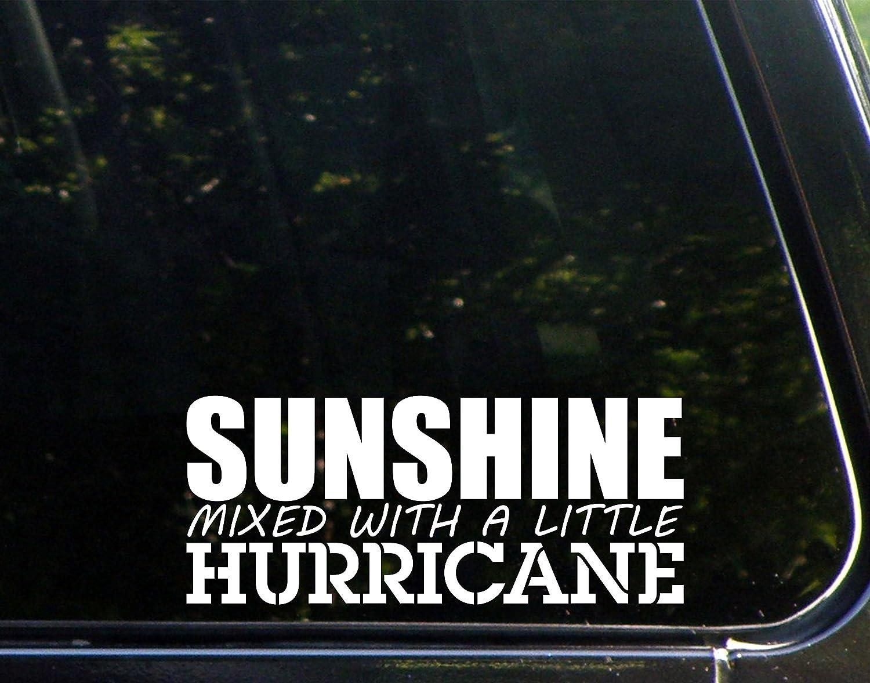 "Sweet Tea Decals Sunshine Mixed with A Little Hurricane - 8"" x 3 1/2"" - Vinyl Die Cut Decal/Bumper Sticker for Windows, Trucks, Cars, Laptops, Macbooks, Etc."