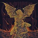 AWAKEN [LP+CD] (180 GRAM, 2-PAGE INSERT, 3 BONUS TRACKS) [12 inch Analog]