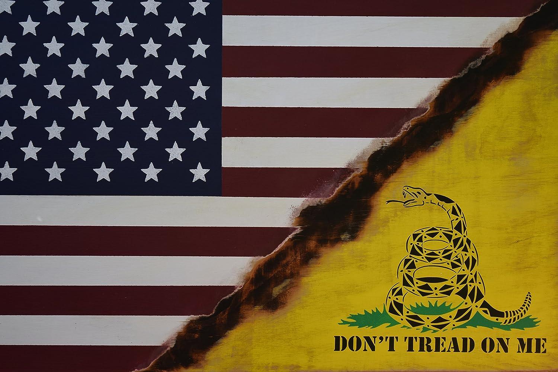 Amazon Com Flag Sign American Flag Don T Tread On Me Flag