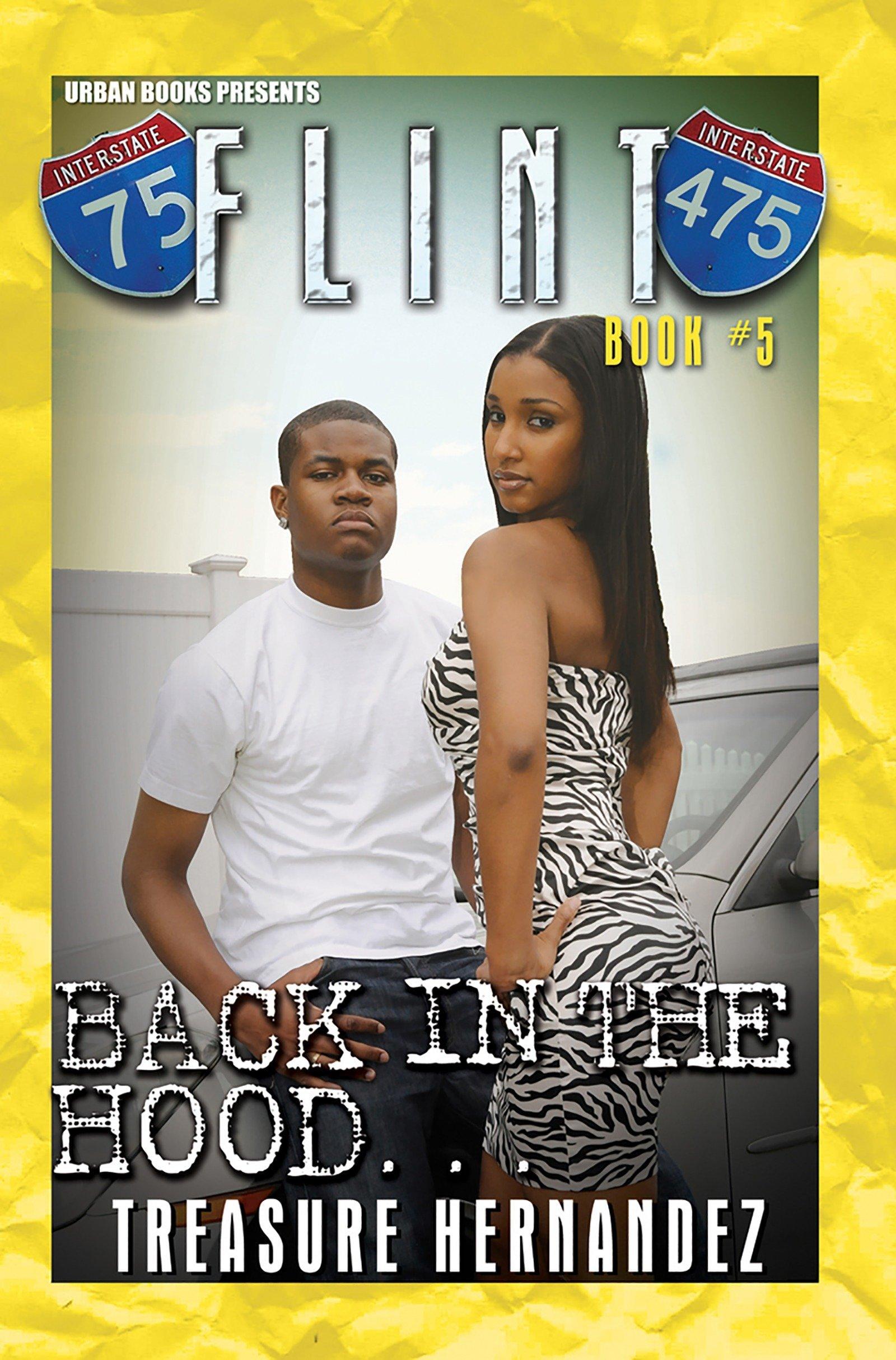 Flint Book 5 ebook
