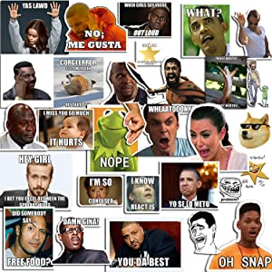 (40 Pack) AnvFlik Funny Internet Memes and Celebrity Vinyl Sticker Pack,for Water Bottles,Laptop,Computer,iPhone,Travel,Luggage,Car,Bike Bicycle