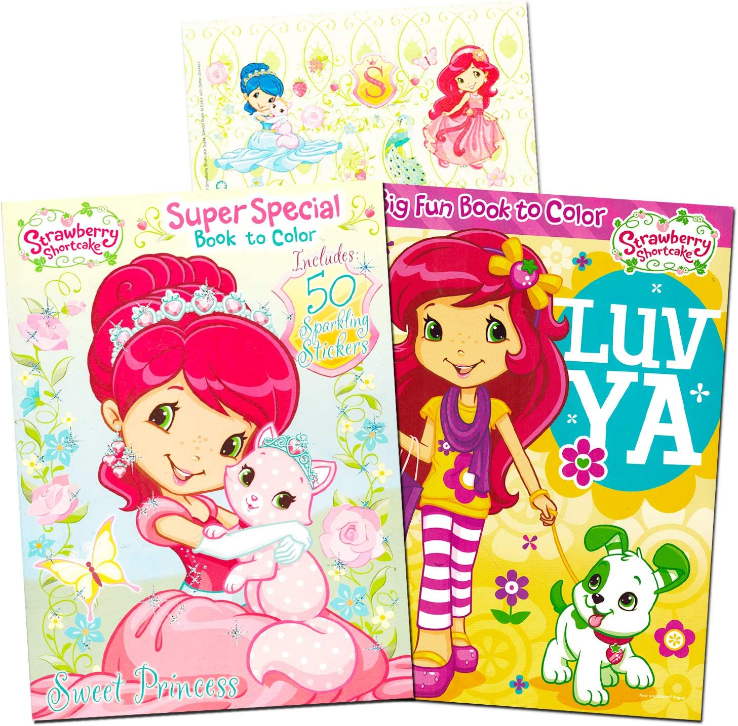 strawberry shortcake coloring book super set 2 jumbo coloring books with over 100 stickers