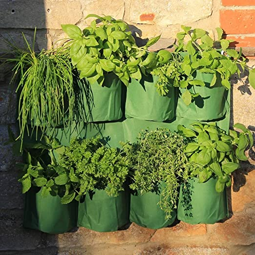 8 bolsillo para colgar de pared maceta jardín Tejido bolsa de cultivo con maceta macetas: Amazon.es: Jardín