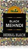 Divine India Black MEHNDI (Herbal Black) 100g