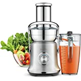 Breville BJE830BSS Juice Founatin Cold XL Centrifugal Juicer, Brushed Stainless Steel