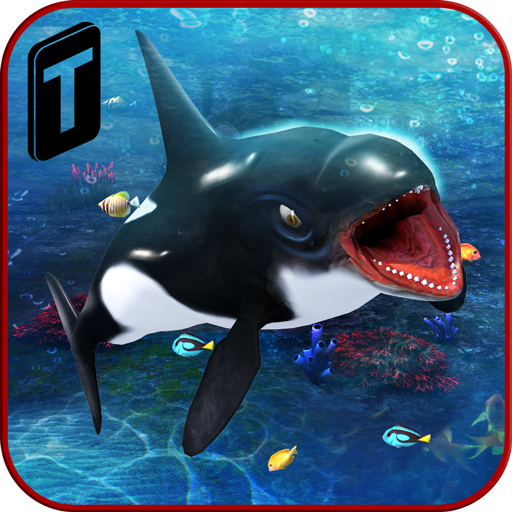 Killer Whale Beach Attack 3D ()