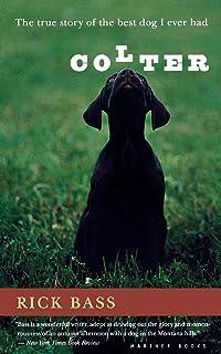activism art brown dog essay yaak