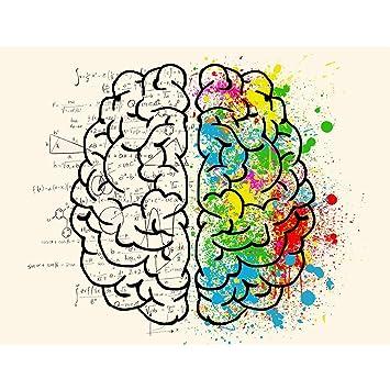 meishe Kunstdruck Modern Poster Menschliches Gehirn, Links und ...