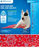 Aqua Coolkeeper Hunde Kühlmatte - Modell: Red Western