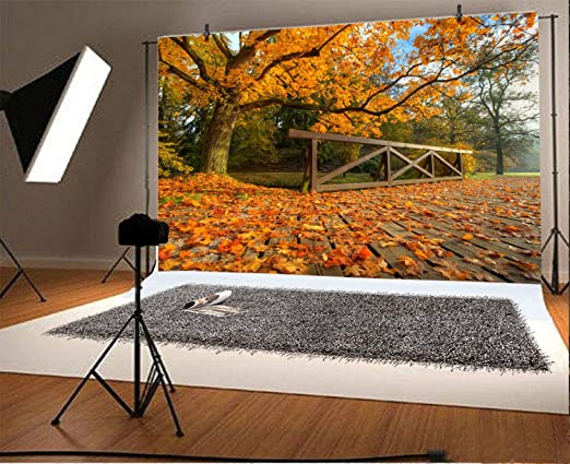 GoEoo 9x6ft Vinyl Backdrops for Photography Forest in Autumn Beautiful Fall Scene Background for Events Parties National Forest Park Wood Floor Tree Leaves Photo Backdrop Photo Studio Props