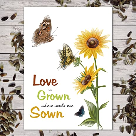 """Amazon.com : Set of 25 Sunflower Seed Packet Favors (F06) """"Love Is Grown"""" Great for Weddings (Autumn Beauty Sunflower Seeds) : Garden & Outdoor"""