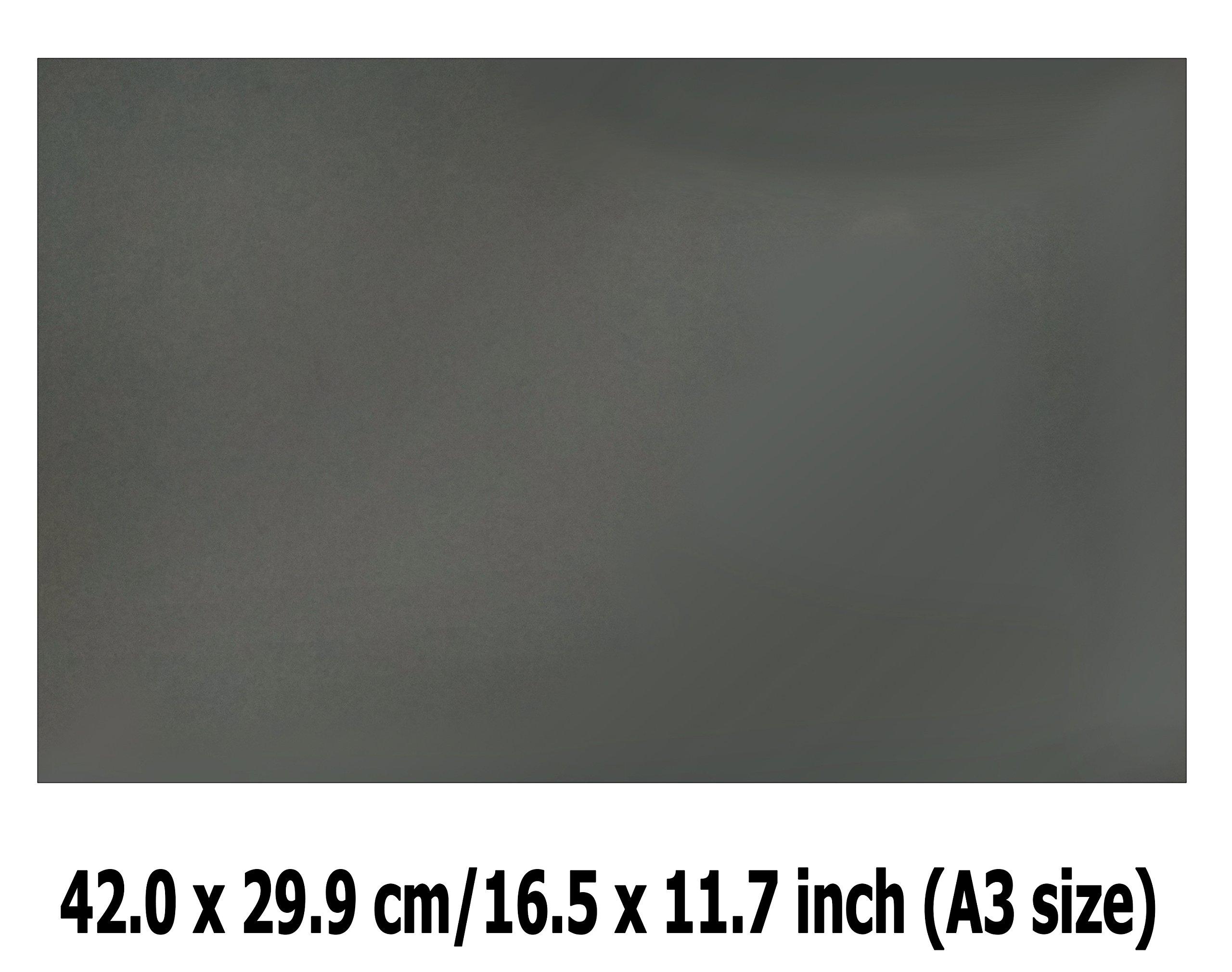 Linear Polarization A3 Sheet Polarizer Educational Physics Polarized Filter Optical