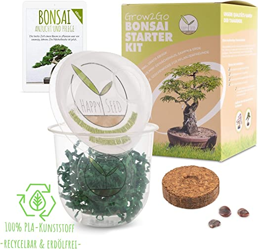 GROW2GO Bonsai Kit incl. eBook GRATUITO - Set con mini invernadero ...