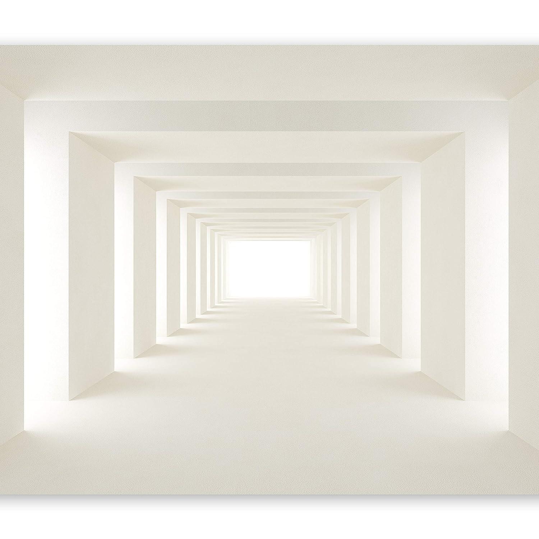 Murando - Fototapete 400x280 cm - Vlies Vlies Vlies Tapete - Moderne Wanddeko - Design Tapete - Wandtapete - Wand Dekoration - Tunnel 3D a-A-0124-a-b B01413VHQM Wandtattoos & Wandbilder e6b6f4