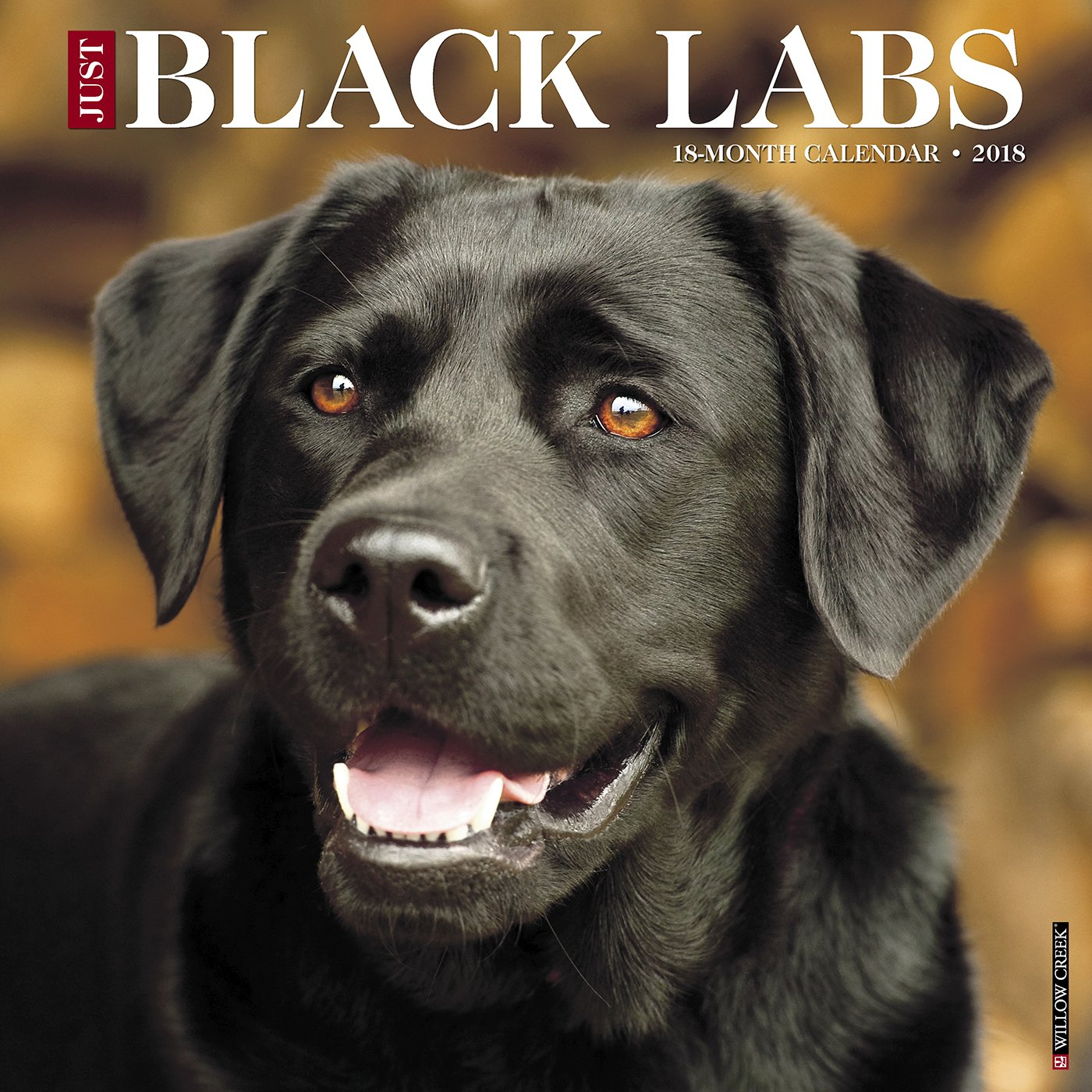 Just Black Labs 2018 Calendar: Willow Creek Press: 0709786040193 ...