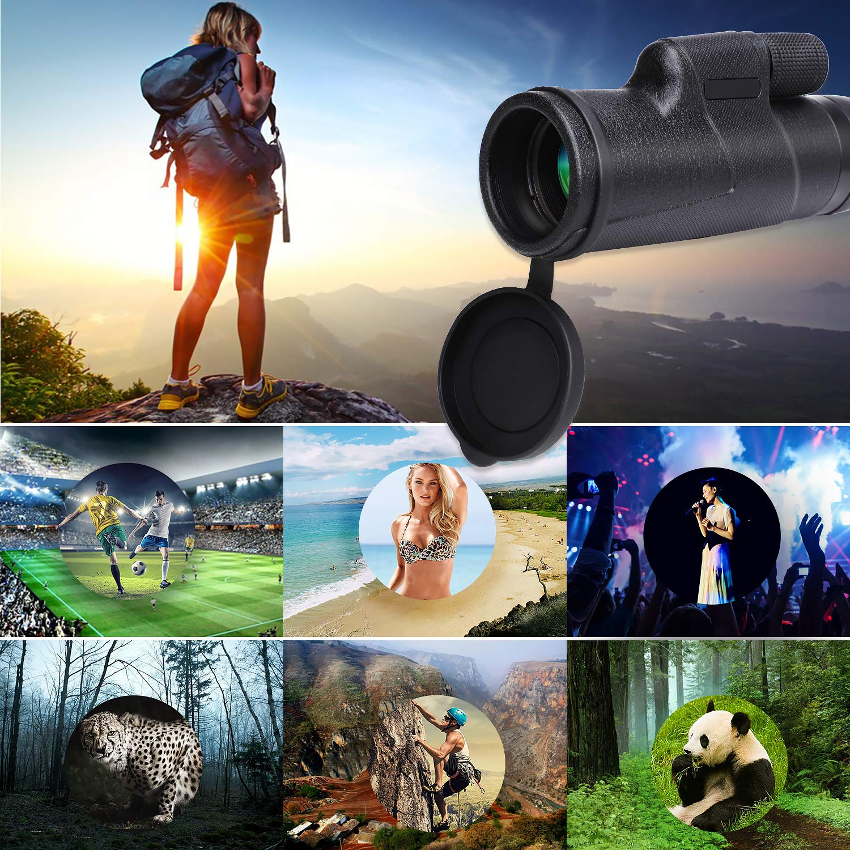 Wilbest T/élescope Monoculaire 12x50 Longue-Vue HD Anti-d/érapant BAK4 Prisme FMC Rev/êtement avec 1 Roue 1 Tr/épied 1 Adaptateur Camping pour T/él/éphone pour Randonn/ée Observation des Oiseaux