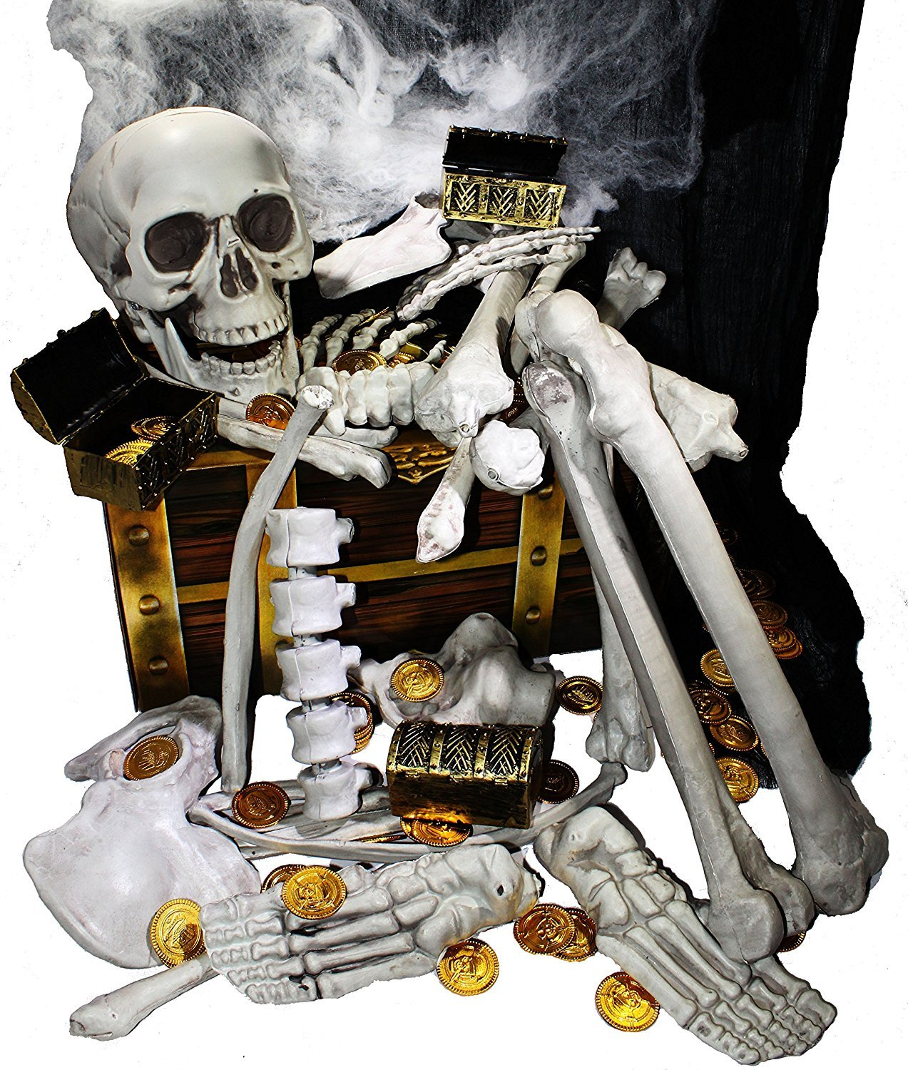 JOYIN Box of Skeleton Bones and Skull for Halloween Decorations Including 28 PCs Halloween Bones 100 Pirate Coins and Spider Webs by JOYIN