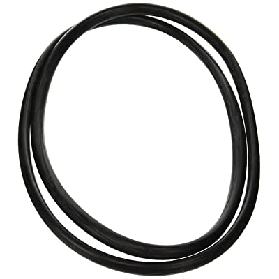 Zodiac R0357800 Tank O-Ring Replacement for Select Zodiac D.E. and Cartridge Pool and Spa Filters: Garden & Outdoor
