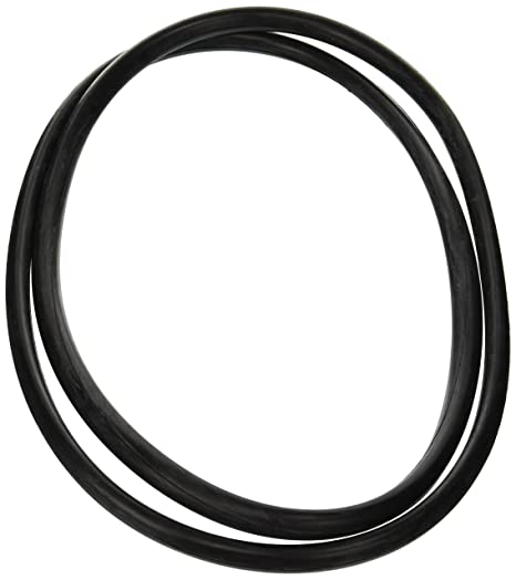Amazon Com Zodiac R0357800 Tank O Ring Replacement For Select