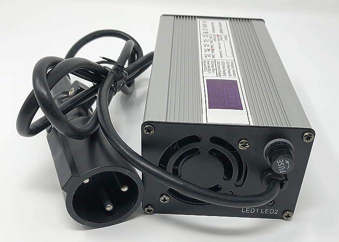 Amazon.com: Club Cargador de coche 48 V – 5 A cargador de ...