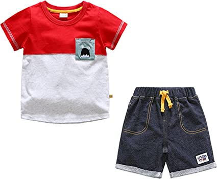 Tee Shirt Set Toddler Baby Boy 2 Piece Short and Long Sleeve Crew Neck 2t 3t 4t