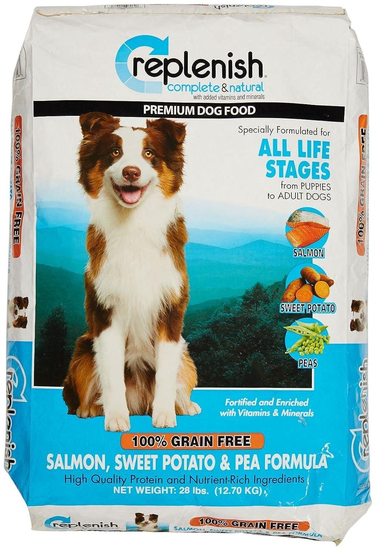 Replenish Grain Free Dry Dog Food, Salmon Recipe, 5-Pound Bag