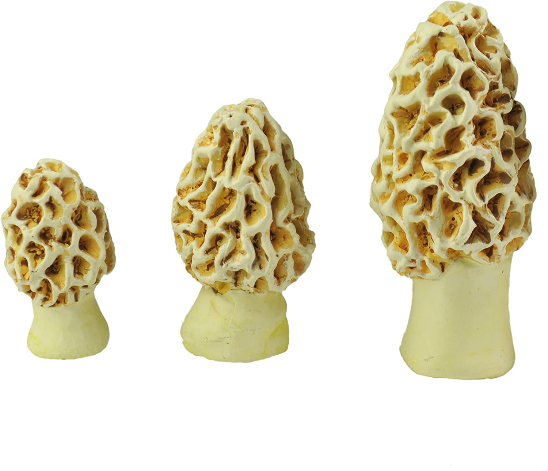 Georgetown Home /& Garden Miniature Morel Esculenta Mushrooms Assorted Garden Decor Set of 3