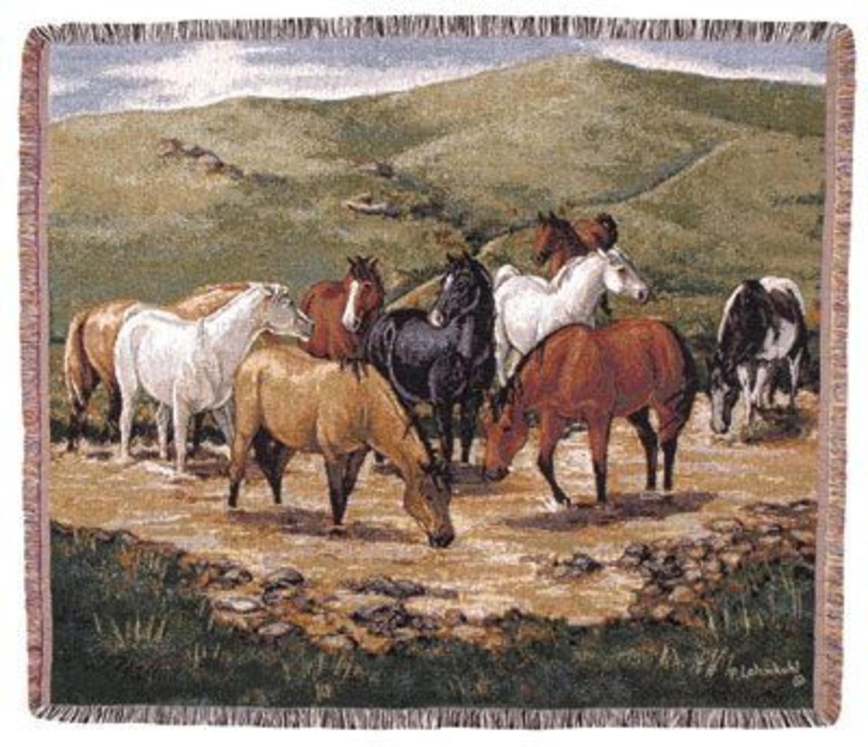 Simply Home Cripple Creek Remunda Tapestry Throw TPM808