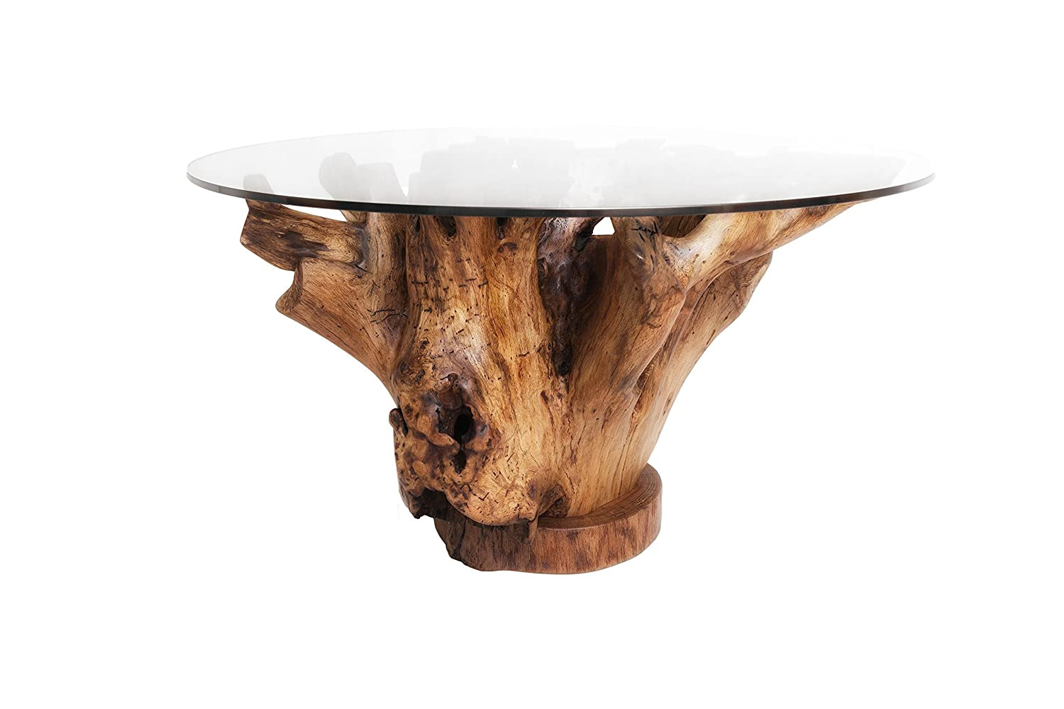 Tree Trunk Coffee Table 3